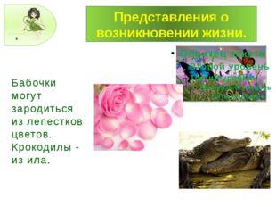 Представления о возникновении жизни. Бабочки могут зародиться из лепестков цв