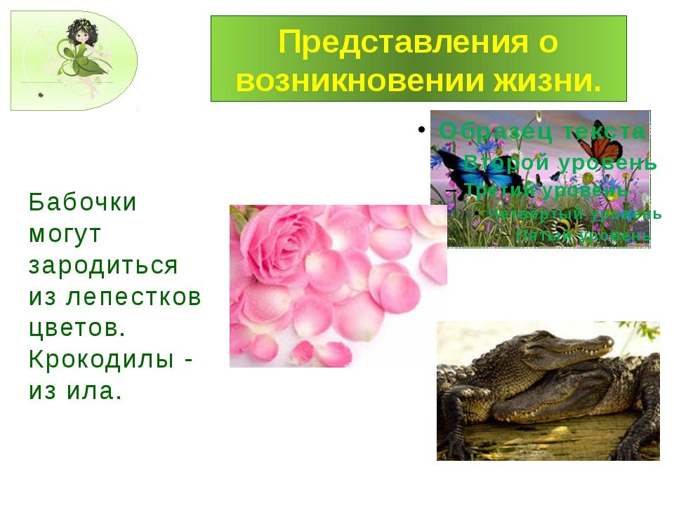 Представления о возникновении жизни. Бабочки могут зародиться из лепестков цв...