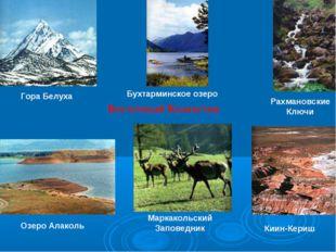 Восточный Казахстан Гора Белуха Маркакольский Заповедник Рахмановские Ключи К