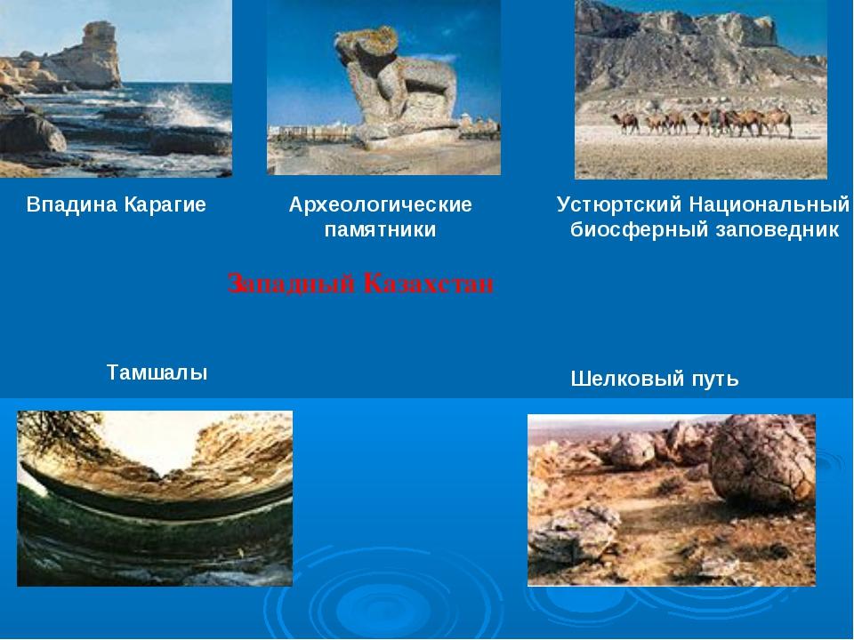 Западный Казахстан Впадина Карагие Устюртский Национальный биосферный заповед...