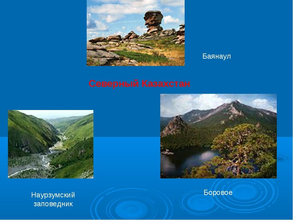 Северный Казахстан Баянаул Наурзумский заповедник Боровое