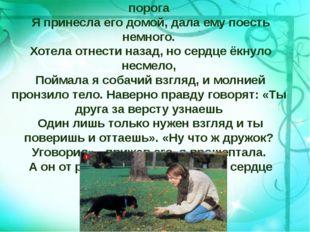 Беспомощный, щенок худой скулил у моего порога Я принесла его домой, дала ему