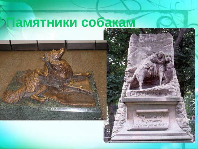 Памятники собакам