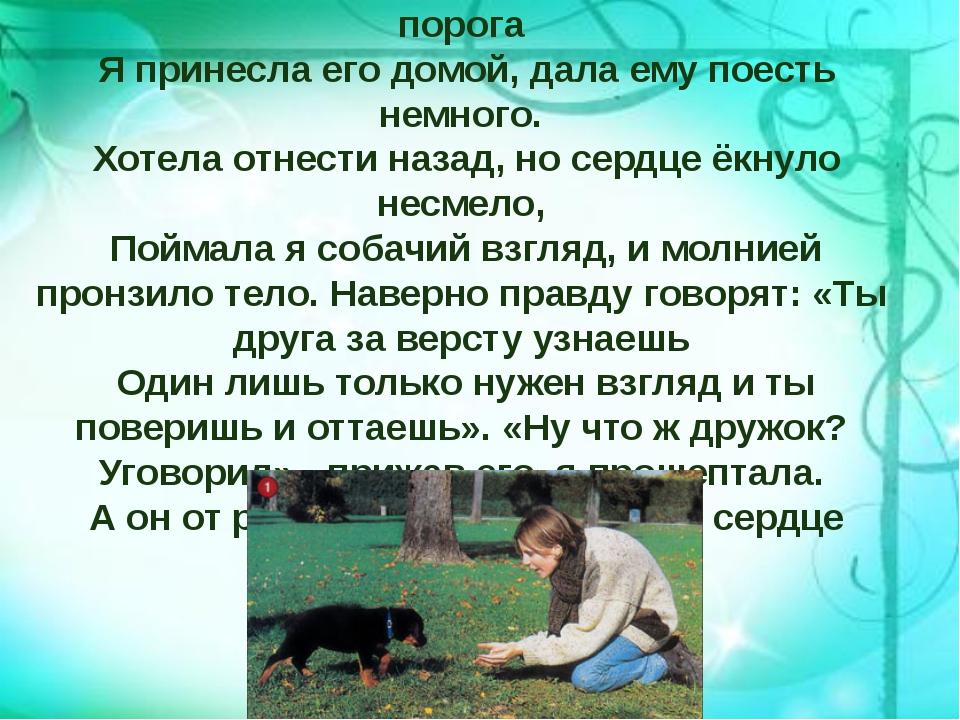 Беспомощный, щенок худой скулил у моего порога Я принесла его домой, дала ему...