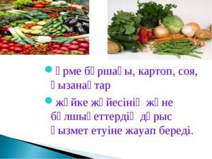 Үрме бұршағы, картоп, соя, қызанақтар жүйке жүйесінің және бұлшықеттердің дұр