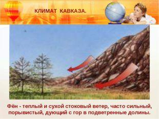 КЛИМАТ КАВКАЗА. Фён - теплый и сухой стоковый ветер, часто сильный, порывисты