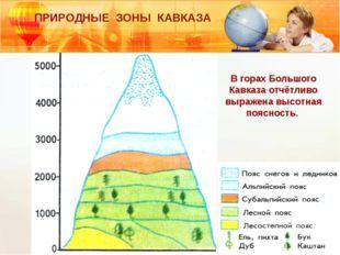 ПРИРОДНЫЕ ЗОНЫ КАВКАЗА В горах Большого Кавказа отчётливо выражена высотная п