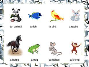 an animal a fish a bird a rabbit a horse a frog a mouse a chimp