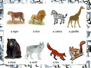 a tiger a lion a zebra a giraffe a bear a wolf a fox a squirrel