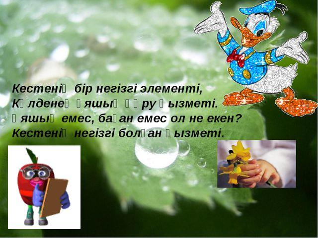 Кестенің бір негізгі элементі, Көлденең ұяшық құру қызметі. Ұяшық емес, баған...