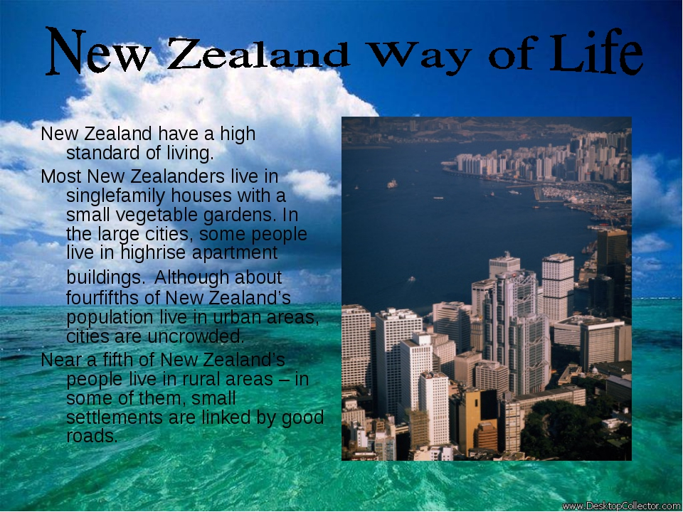 New Zealand have a high standard of living. Most New Zealanders live in singl...