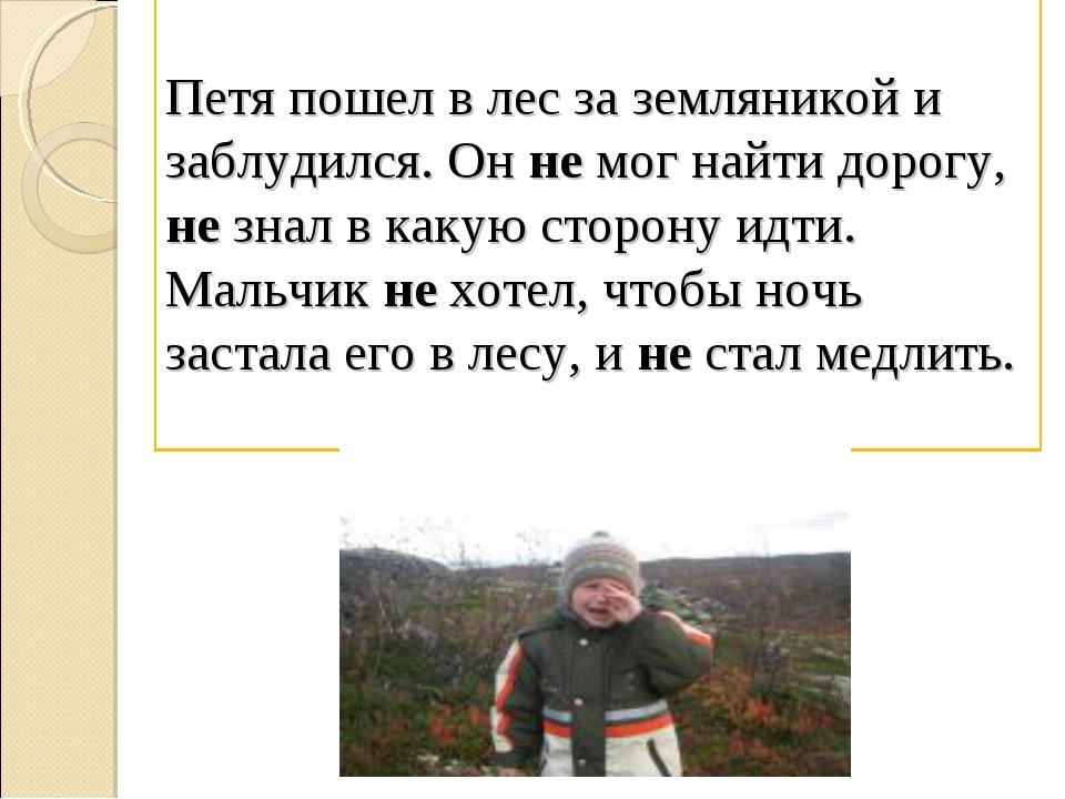 Петя пошел в лес за земляникой и заблудился. Он не мог найти дорогу, не знал...