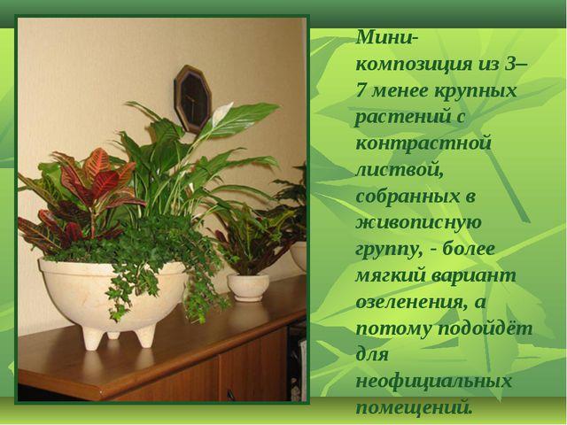 Мини-композиция из 3–7 менее крупных растений с контрастной листвой, собранны...