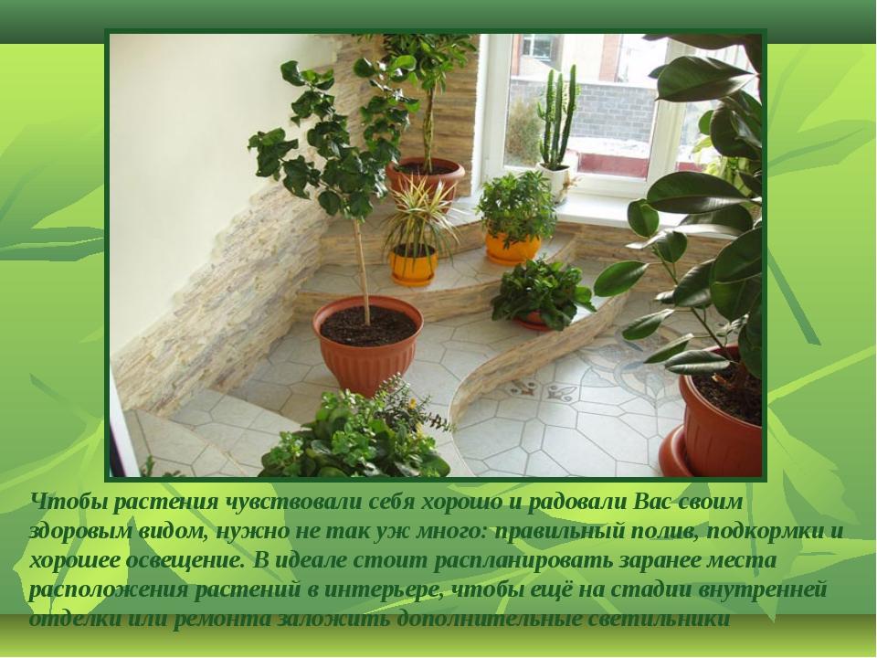 Чтобы растения чувствовали себя хорошо и радовали Вас своим здоровым видом, н...