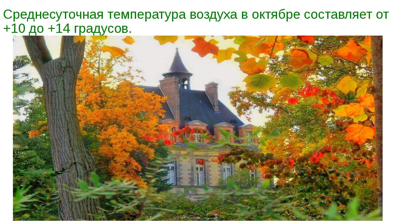 Среднесуточная температура воздуха в октябре составляет от +10 до +14 градусов.