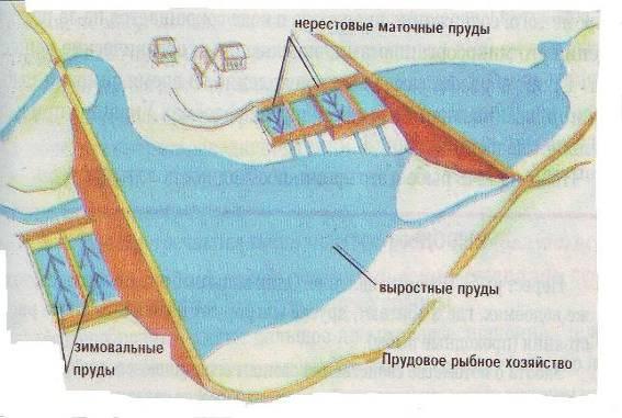 http://xreferat.ru/image/10/1304769901_15.jpg