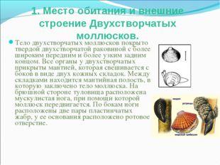 1. Место обитания и внешние строение Двухстворчатых моллюсков. Тело двухствор