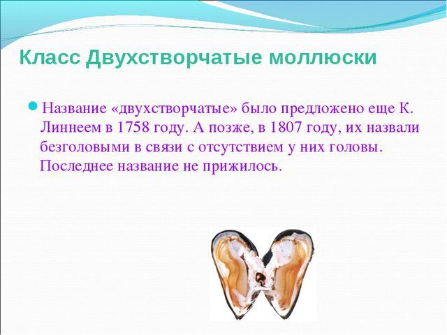 Класс Двухстворчатые моллюски Название «двухстворчатые» было предложено еще К...