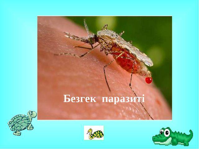 Безгек паразиті