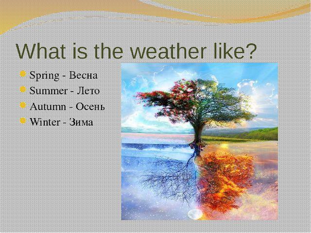 What is the weather like? Spring - Весна Summer - Лето Autumn - Осень Winter...