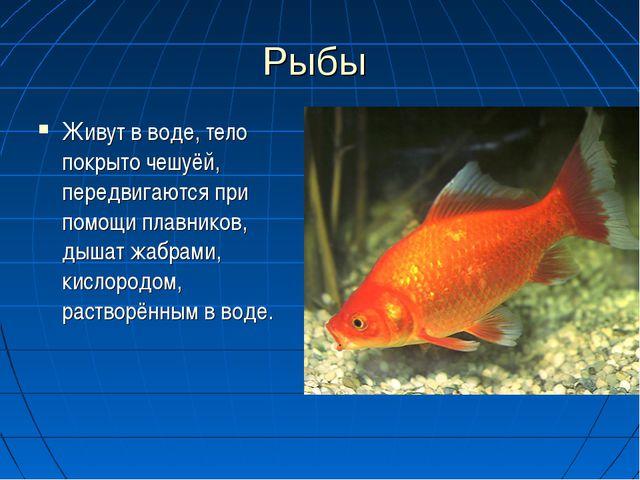 Рыбы Живут в воде, тело покрыто чешуёй, передвигаются при помощи плавников, д...