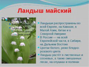 Ландыш майский Ландыши распространены во всей Европе, на Кавказе, в Малой Ази