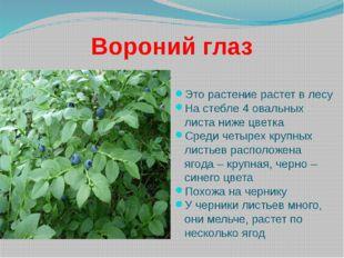 Вороний глаз Это растение растет в лесу На стебле 4 овальных листа ниже цветк