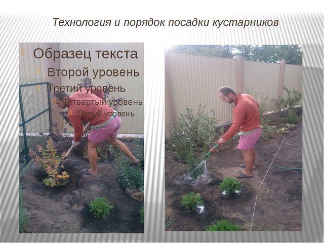 Технология и порядок посадки кустарников