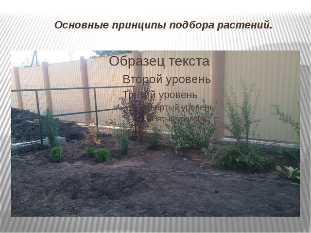 Основные принципы подбора растений.