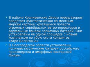 В районе Крапивенские Дворы перед взором предстает фантастическая по местным