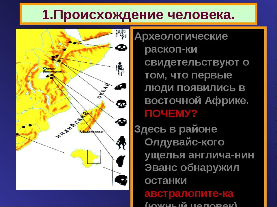 1.Происхождение человека. Археологические раскоп-ки свидетельствуют о том, чт...