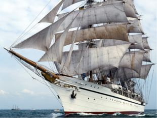 Бригантина «Команда корабля» Капитан корабля - начальник площадки Козлова Ни