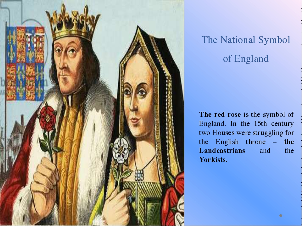 The National Symbol of England The red rose is the symbol of England. In the...