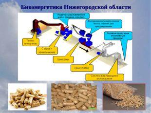 Биоэнергетика Нижегородской области