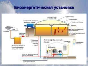 Биоэнергетическая установка