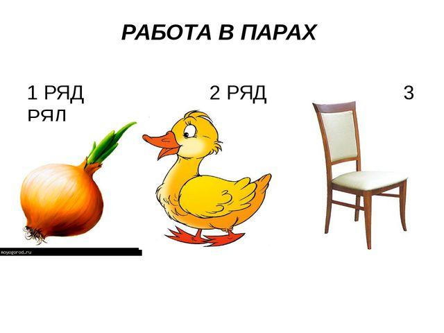 РАБОТА В ПАРАХ 1 РЯД 2 РЯД 3 РЯД
