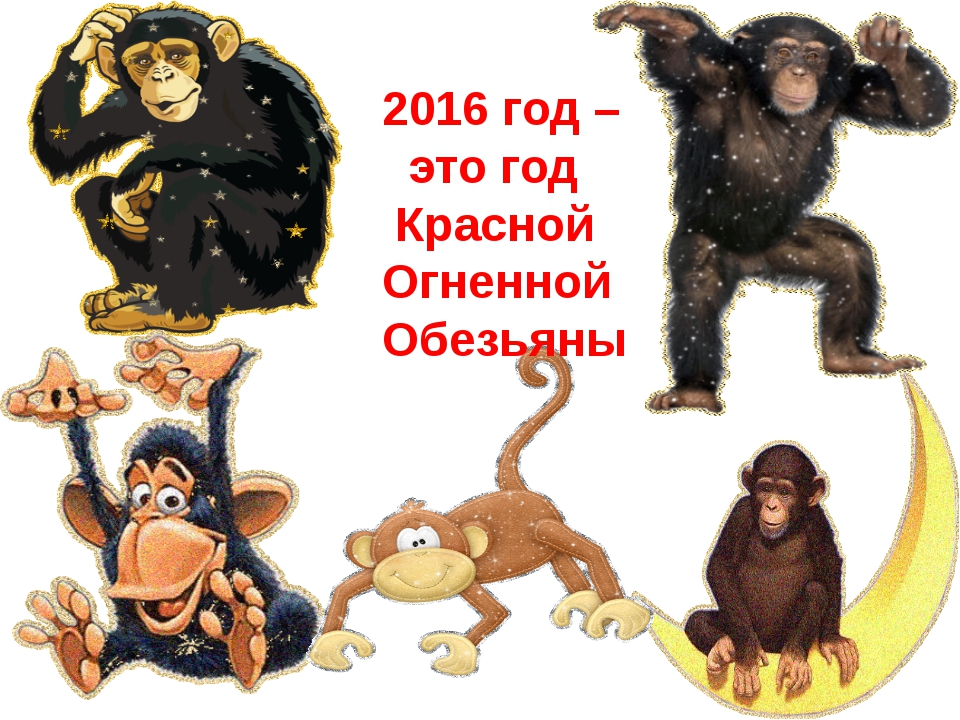 2016 год – это год Красной Огненной Обезьяны