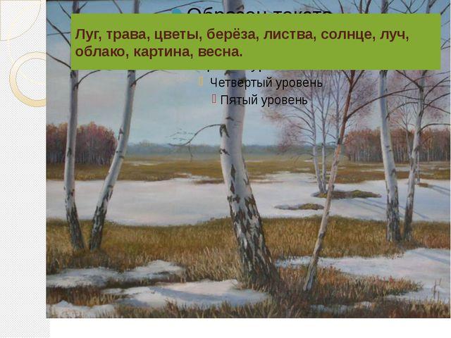 Луг, трава, цветы, берёза, листва, солнце, луч, облако, картина, весна.
