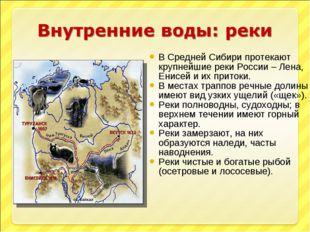 В Средней Сибири протекают крупнейшие реки России – Лена, Енисей и их притоки