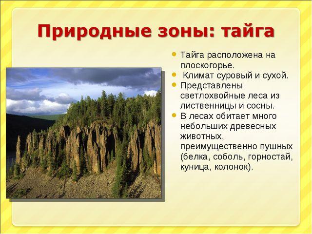 Тайга расположена на плоскогорье. Климат суровый и сухой. Представлены светло...