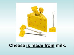 Cheese is made from milk.