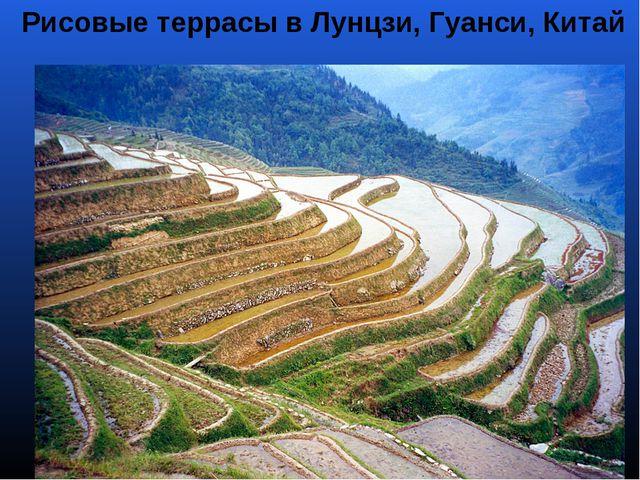 Рисовые террасы в Лунцзи, Гуанси, Китай
