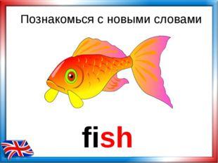 fish Познакомься с новыми словами