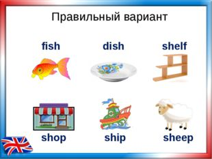 Правильный вариант shop ship fish dish shelf sheep