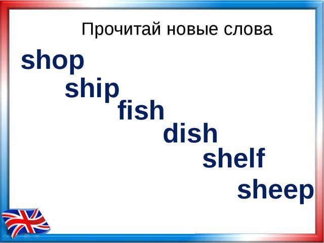 Прочитай новые слова shop ship fish dish shelf sheep
