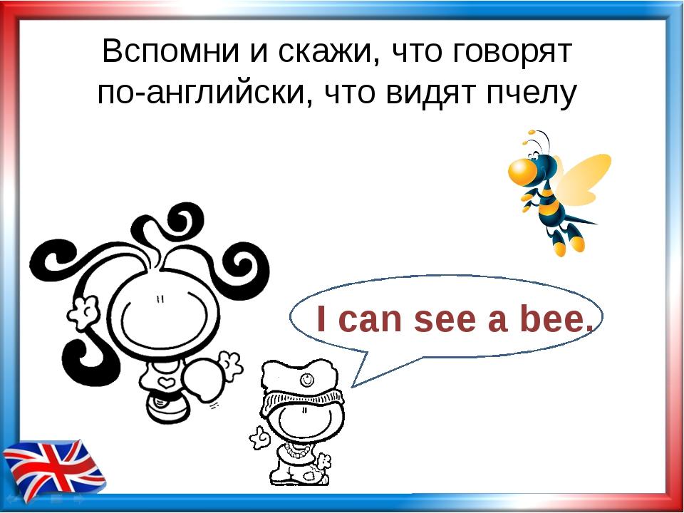 Вспомни и скажи, что говорят по-английски, что видят пчелу I can see a bee.