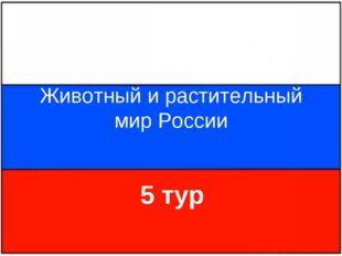 Животный и растительный мир России 5 тур