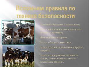 Вспомним правила по технике безопасности Ласковое обращение с животными; Пере