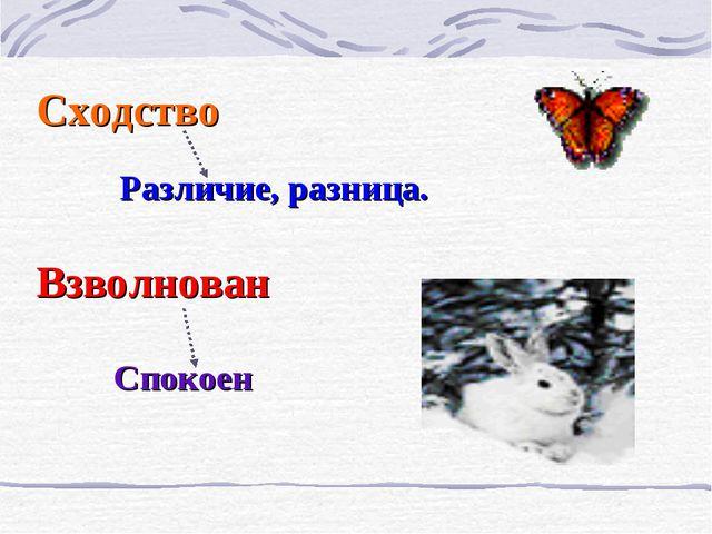 Сходство Различие, разница. Взволнован Спокоен