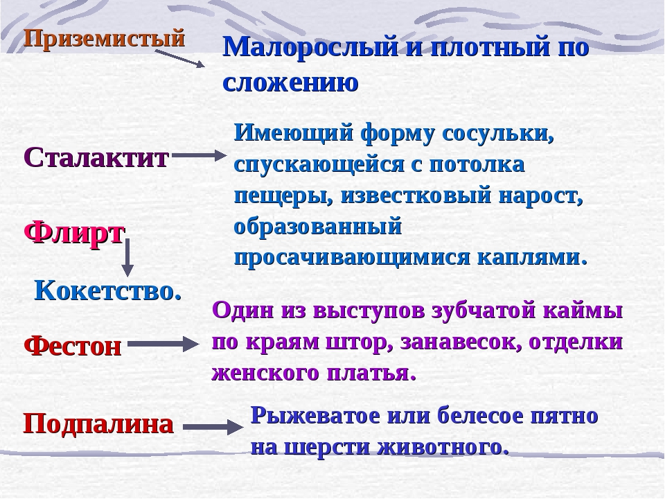 Приземистый Сталактит Флирт Фестон Подпалина Малорослый и плотный по сложению...
